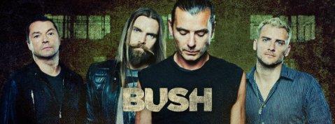 Bush - JAIMEVILLE.COM